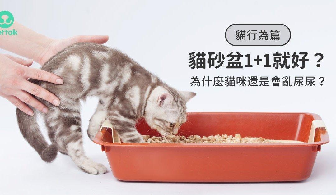 猫咪不使用猫砂盆的原因及解决办法