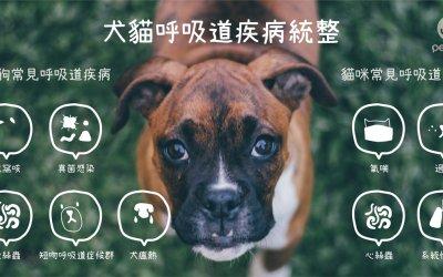 犬猫呼吸道疾病症状种类及预防