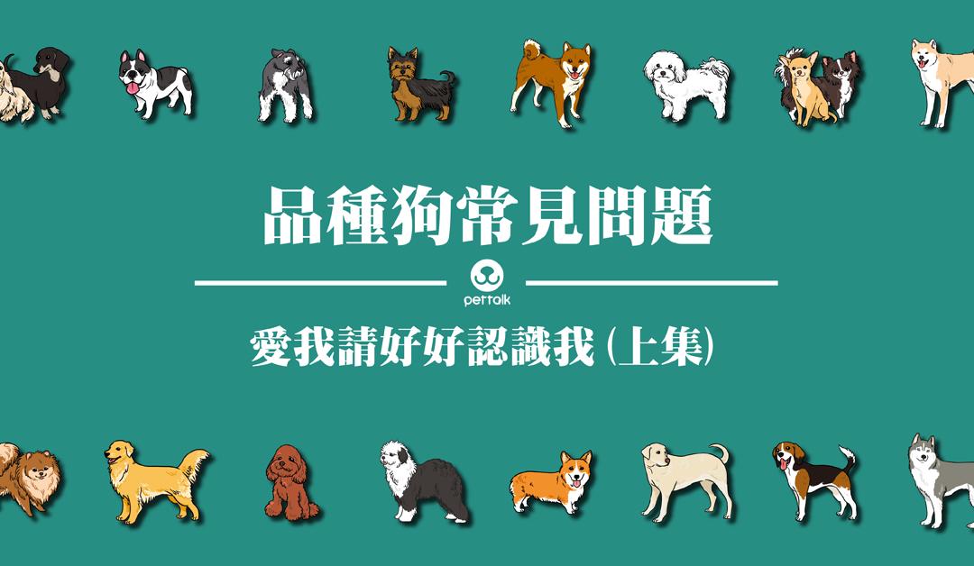 想带我回家,请先认识我:品种狗常见问题(上)