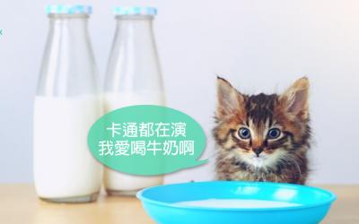 猫喝牛奶会怎样?猫爱吃鱼吗|专业兽医—吴展祥