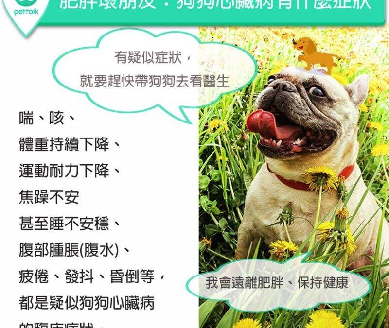 狗狗心脏病有什么症状?