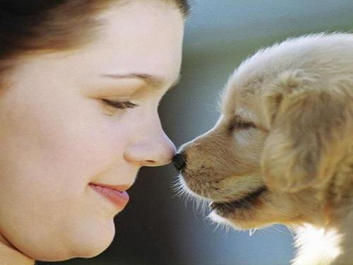 狗和人共患疾病有哪些?狗和人会相互传染疾病吗