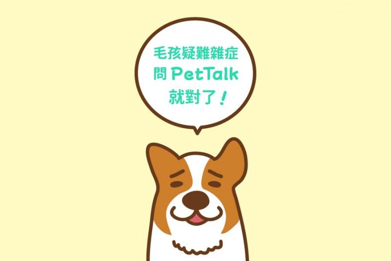 狗狗绿脓杆菌感染